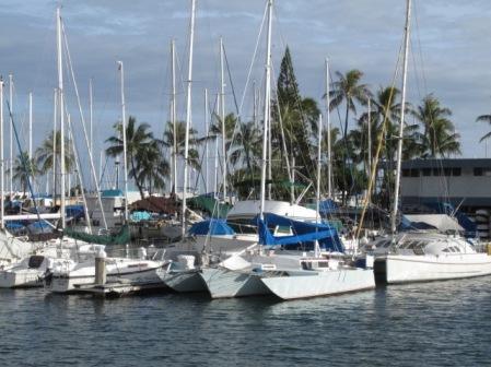 Nice Boats 1